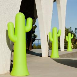 Cactus lumineux - Pancho - Newgarden